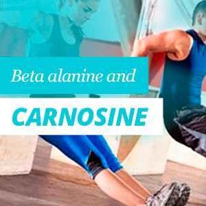 Image result for Beta-alanine Plus Carnosine: A Potent Buffer