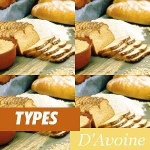 Différents types d'Avoine