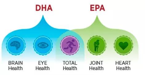 Funzioni dell'EPA e DHA sulla nostra salute