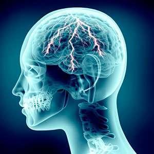 Curcumina e Sistema Nervoso