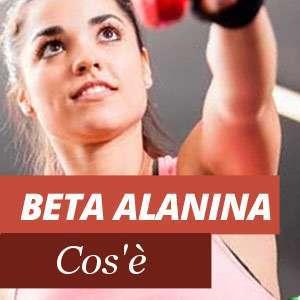 Tutto sulla beta-alanina