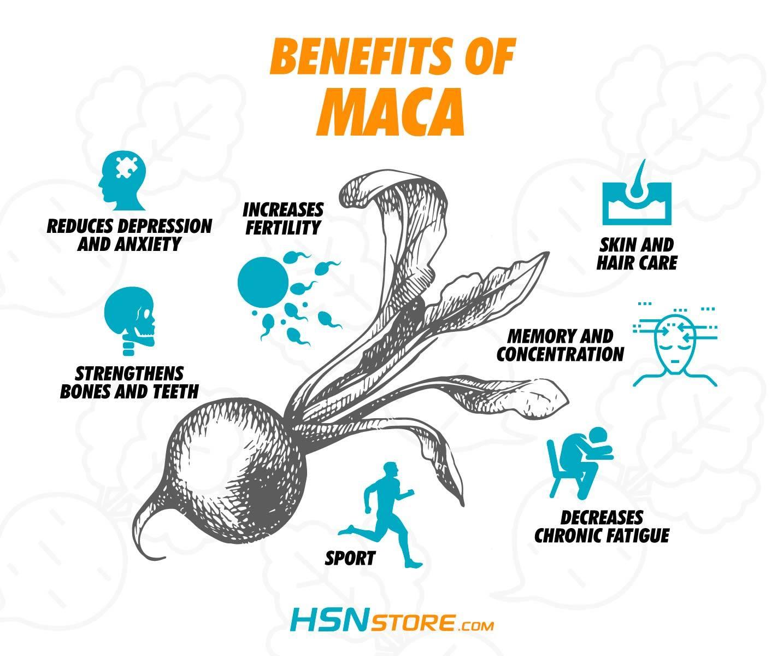 Maca properties and benefits