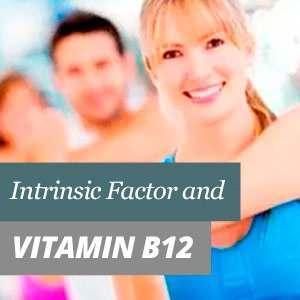 Vitamina B12 factor intrínseco